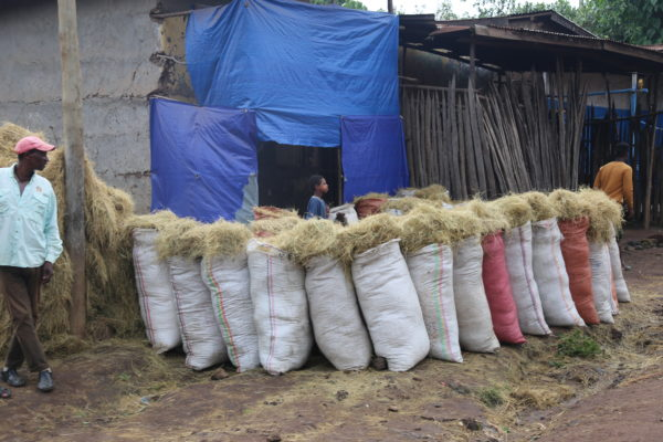 Shopping in Ethiopia: Business Based on Relationships