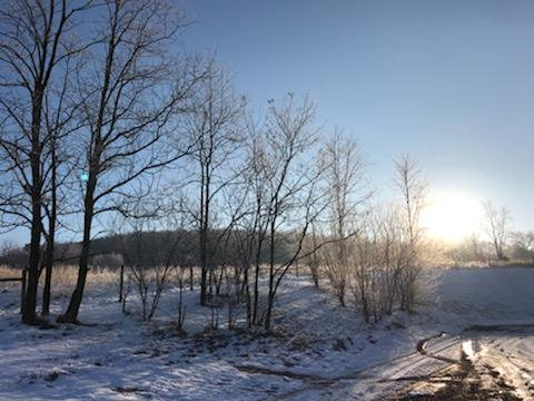 Scenic picture of a snowy morning at Green Valley