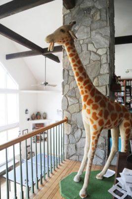 Lifesize Giraffe
